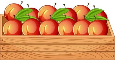 Many peaches in wooden crate isolated on white background vector