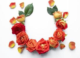 Flowers composition. Frame made of red  roses and leaves on white background photo