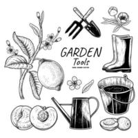 Sketch vector set of gardening tools. Fork, Trowel, Bucket, Watering can, Boots, Lemon branch, Peach and Olive Hand drawn illustration