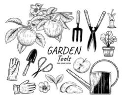 Sketch vector set of gardening tools. Fork, Trowel, Plant pot, Watering can, Gloves, Scissors, Apple branch, Half, Core and Slice Hand drawn illustration