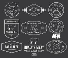 diseño de insignias y etiquetas vectoriales vector