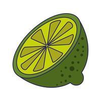 Lemon citric fruit isolated vector