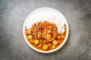 Crispy fried pork cutlet with curry and rice photo