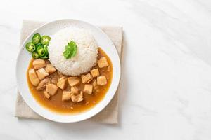 Chicken in brown sauce or gravy sauce with rice photo