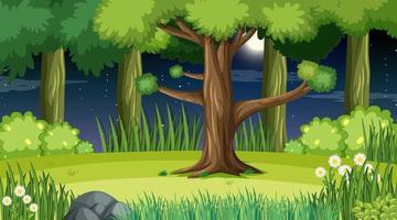 escena del paisaje forestal en la noche con muchos árboles vector