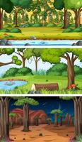 Set of different forest horizontal scenes in different times vector
