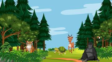 Forest scene with different wild animals vector