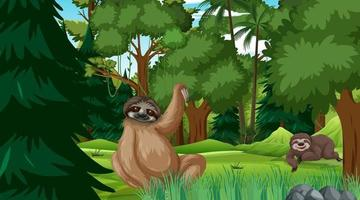 Sloth in forest at daytime scene with many trees vector