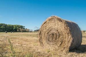 Farm Hay Roll photo