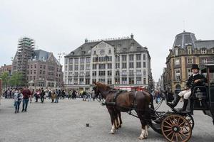The beautiful Amsterdam in june photo