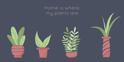 Set of cute houseplants Botanical home garden poster Collection of scrapbooking elements Natural collection of plants Floral card Vector illustration