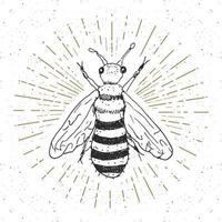 Vintage label, Hand drawn bee, grunge textured badge, retro logo template, typography design vector illustration