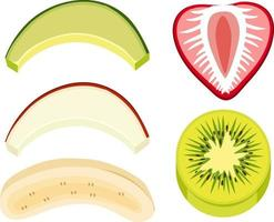 Sliced mixed fruit  on white background vector
