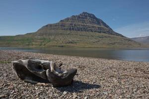 holmatindur, icónica montaña emblemática en eskifjordur, islandia foto