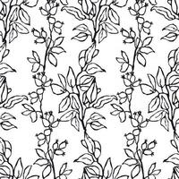 Vector seamless background with hand drawn illustration of herbs, or plants black on white field. Can be used for wallpaper, pattern fills, web page, surface textures, textile print, wrapping paper