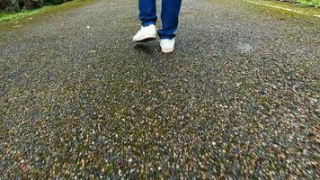 gros plan sur des jambes de voyageuses marchant sur une route goudronnée au milieu de la nature. video