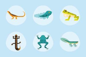 six cute amphibians vector