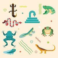 nueve lindos anfibios vector