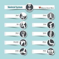 Skeletal System  medical sticky note style  flat design vector