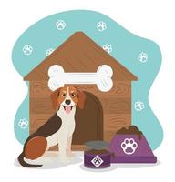 pet dog beagle breed house and bowl with food vector