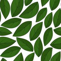 Tropical background with leaves Leaf repeated background vector