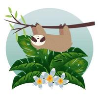 sloth hanging in tree branch with flowers and leafs vector illustration design