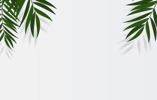 Abstract Realistic Green Palm Leaf Tropical Background. Vector illustration EPS10