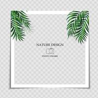 Natural Background Photo Frame Template with Palm leaves for post in Social Network. Vector Illustration EPS10