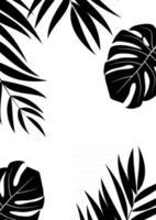 Natural Realistic Palm Leaf Tropical Background. Vector illustration EPS10