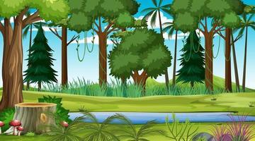 escena del paisaje forestal durante el día con muchos árboles diferentes vector