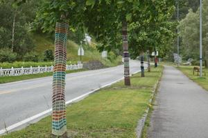 Knitted trees in Eidfkord, Norway photo