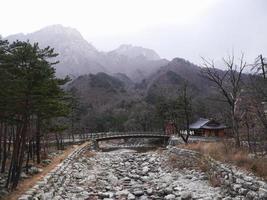 el pequeño puente en el parque nacional de seoraksan. Corea del Sur foto
