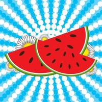 Red watermelon slices and flowers on a striped blue and white background vector