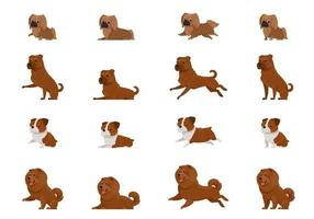 Set of dogs in different poses. Pekingese, Shar Pei, English Bulldog and Chow-Chow in cartoon style. vector