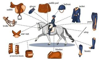 Equestrian sport infographics horse harness and rider equipment in the center of a rider on a horse in cartoon style vector
