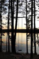 Handmade swing in the pine forest near the lake at sunset photo