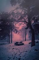 Winter in the mountain in winter season photo