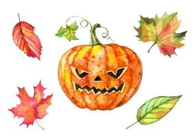 Set of watercolor elements for Halloween. Pumpkin and autumn leaves. Vector