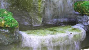 waterfall and green moss on the rock with water spray floating in the air video