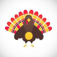 Thanksgiving day symbol red feathers turkey flat style gradient design vector illustration. Cute cartoon mascot holidays autumn harvest character isolated on white background.