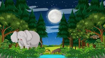 Forest at night time scene with a big elephant and other animals vector