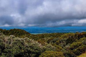 el campo de taranaki, nueva zelanda foto