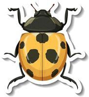 A sticker template with a yellow ladybug isolated vector