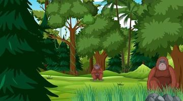 Orangutan in forest or rainforest scene with many trees vector