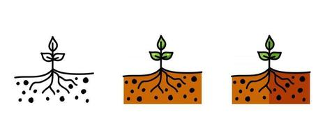 Contour and color symbols of the seedling vector