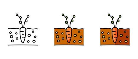 Contour and color symbols of a carrot seedling vector