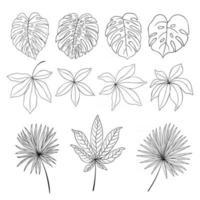 Monstera and exotic plants lline art vector