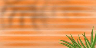 fondo de madera con aloe vera vector