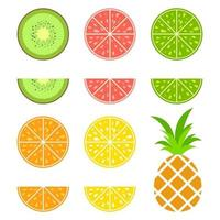 Set of colored isolated apetitic fruits on a white background. Juicy, bright, delicious tropical food. Simple flat vector illustration. Kiwi, grapefruit, lime, orange, lemon, pineapple