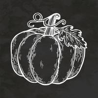 vector de ilustración vintage de bosquejo de estilo retro dibujado a mano de calabaza de halloween